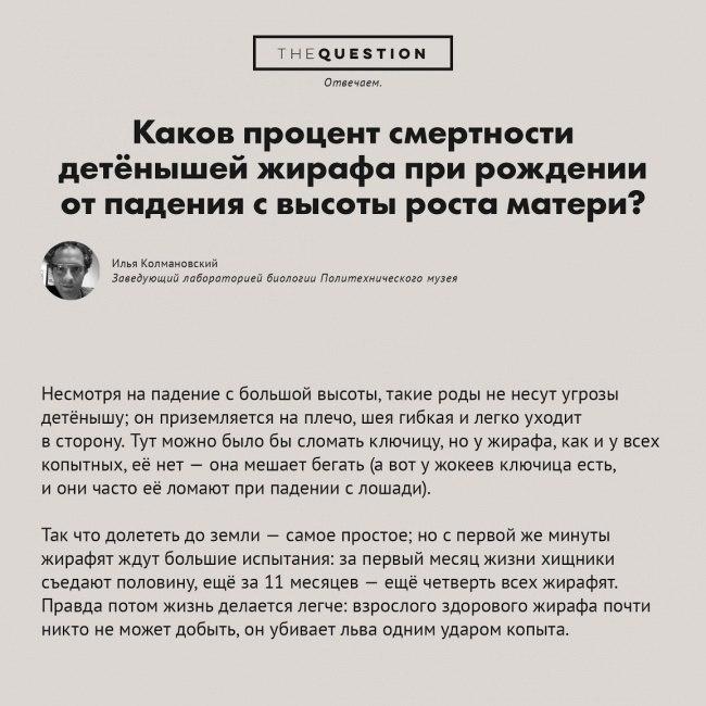 самые-странные-вопросы5.jpg