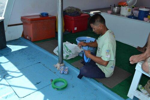 Наживка для рыбы - кальмары