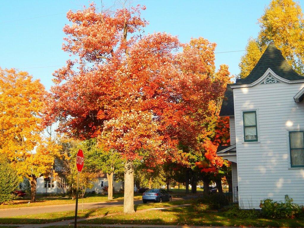Осень в Меррилле.