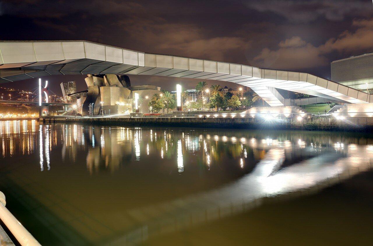 Бильбао. Пешеходный мост (Pasarela Pedro Arrupe).