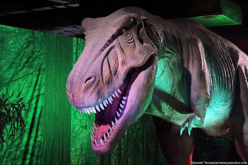 Весна. Детский мир. Динозавры. 31.03.15.02..jpg