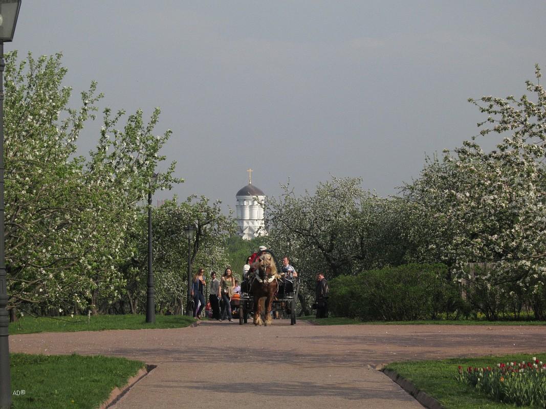 Коломенское 2012
