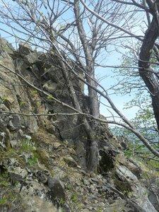 У каменных вершин ... SAM_6740.JPG