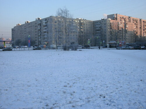 Будапештская ул. 86к1