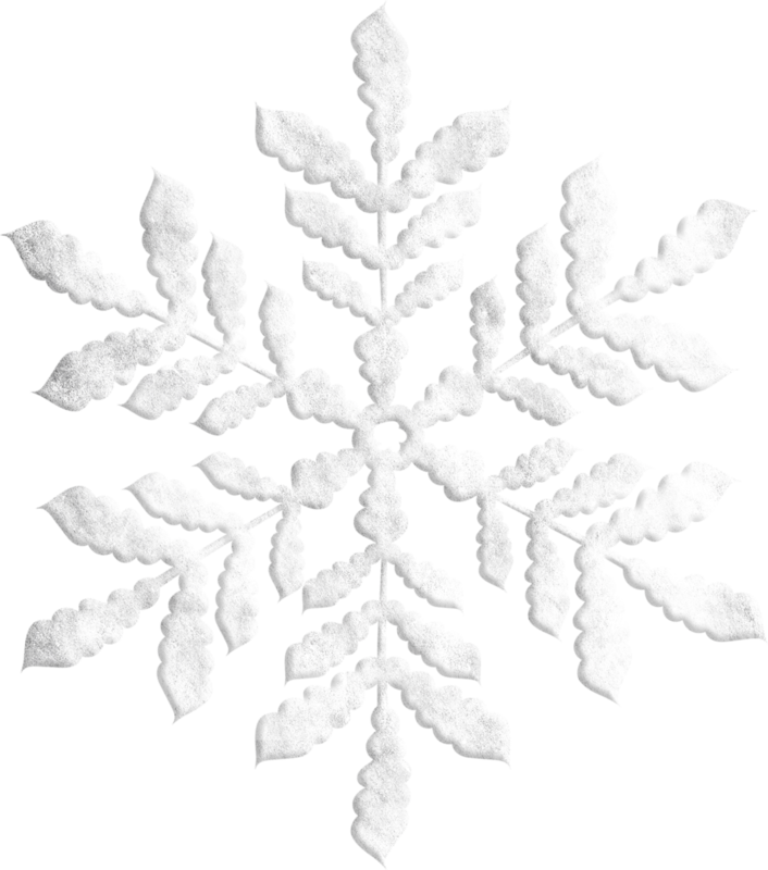 natali_14_winter_doodle6b.png