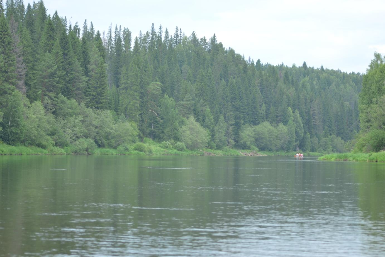 Берег реки Чусовой между деревней Каменка и Нижним селом (08.07.2015)