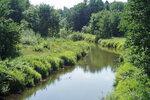 Природа 2007