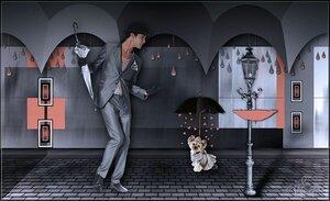 зонты.jpg