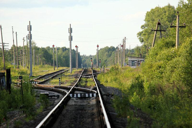 4 пути станции Осуга, самый левый путь зашит