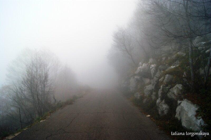 Дорога в Ластве