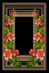 Frame (40).png
