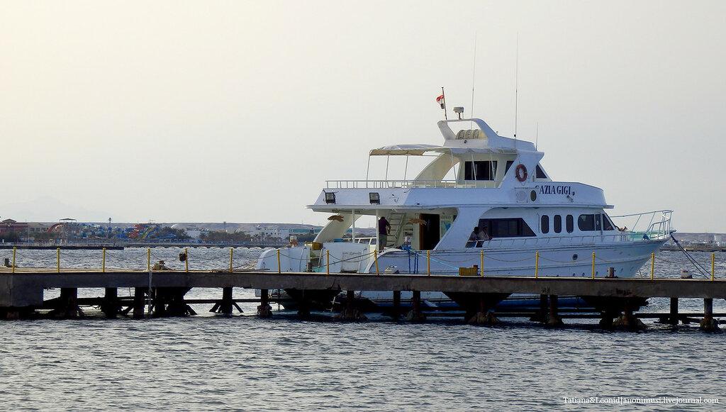 Морское. Египет