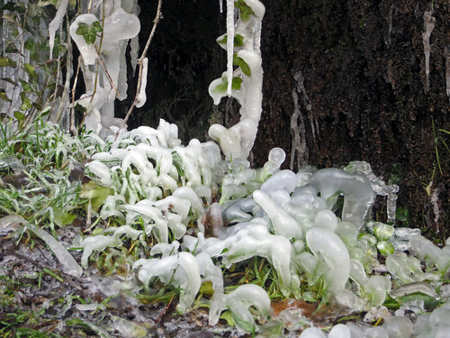 Роспись зимы