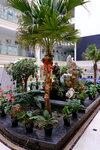 Пальма в центральном холле