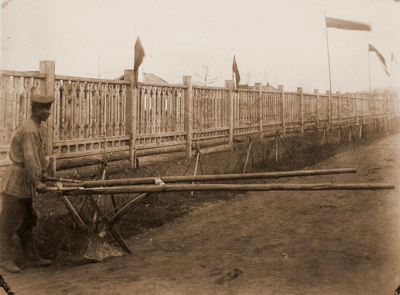12. Вид одного из экспонатов выставки - сохи