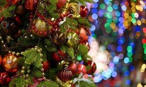 Сегодня люди готовятся встречать Рождество
