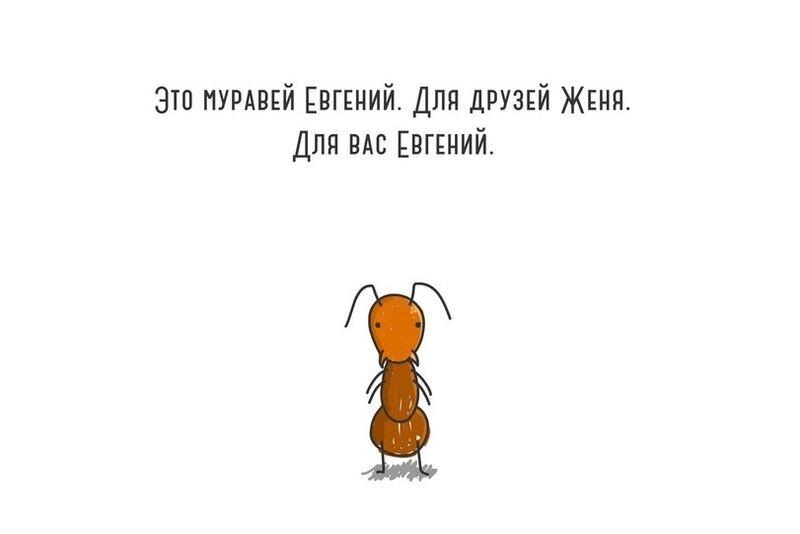 Жизненный путь муравья Евгения