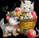 cat333.png