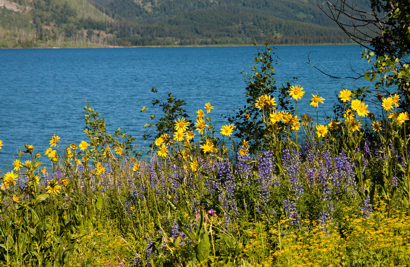 Национальный парк Гранд-Ти́тон