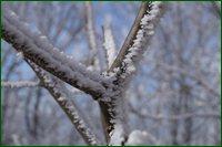 http://img-fotki.yandex.ru/get/15575/15842935.4c/0_c63c4_845267a6_orig.jpg