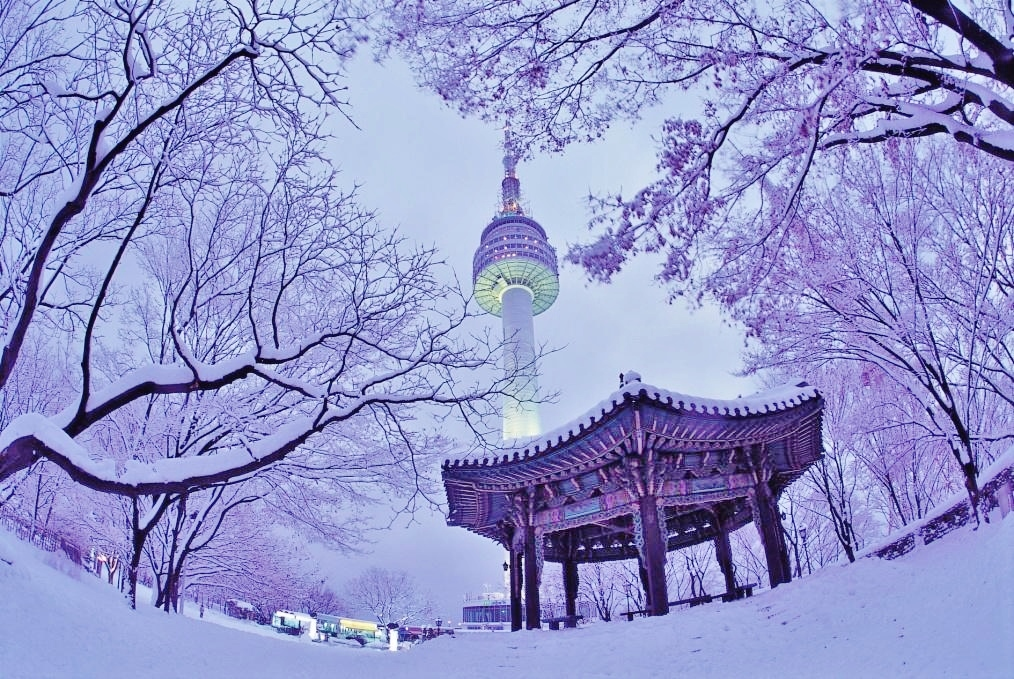 winter-on-namsan-mountain-with-n-seoul-tower-in-the-background[1].jpg