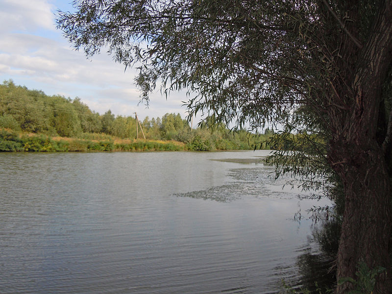 Lake_Kahul_-_canal.jpg