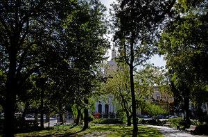 Парк Базилика-да-Эштрела