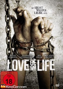 Love of my Life (2013)