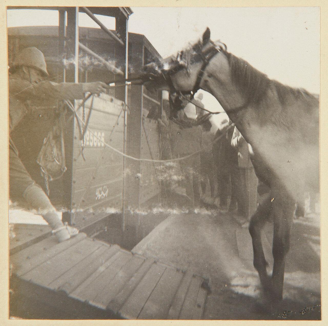 Август 1898. Погрузка в поезд 21-го Уланского полка