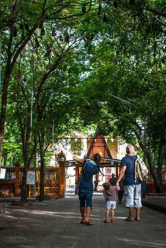 Храм летучих лисиц в Чаченгсау