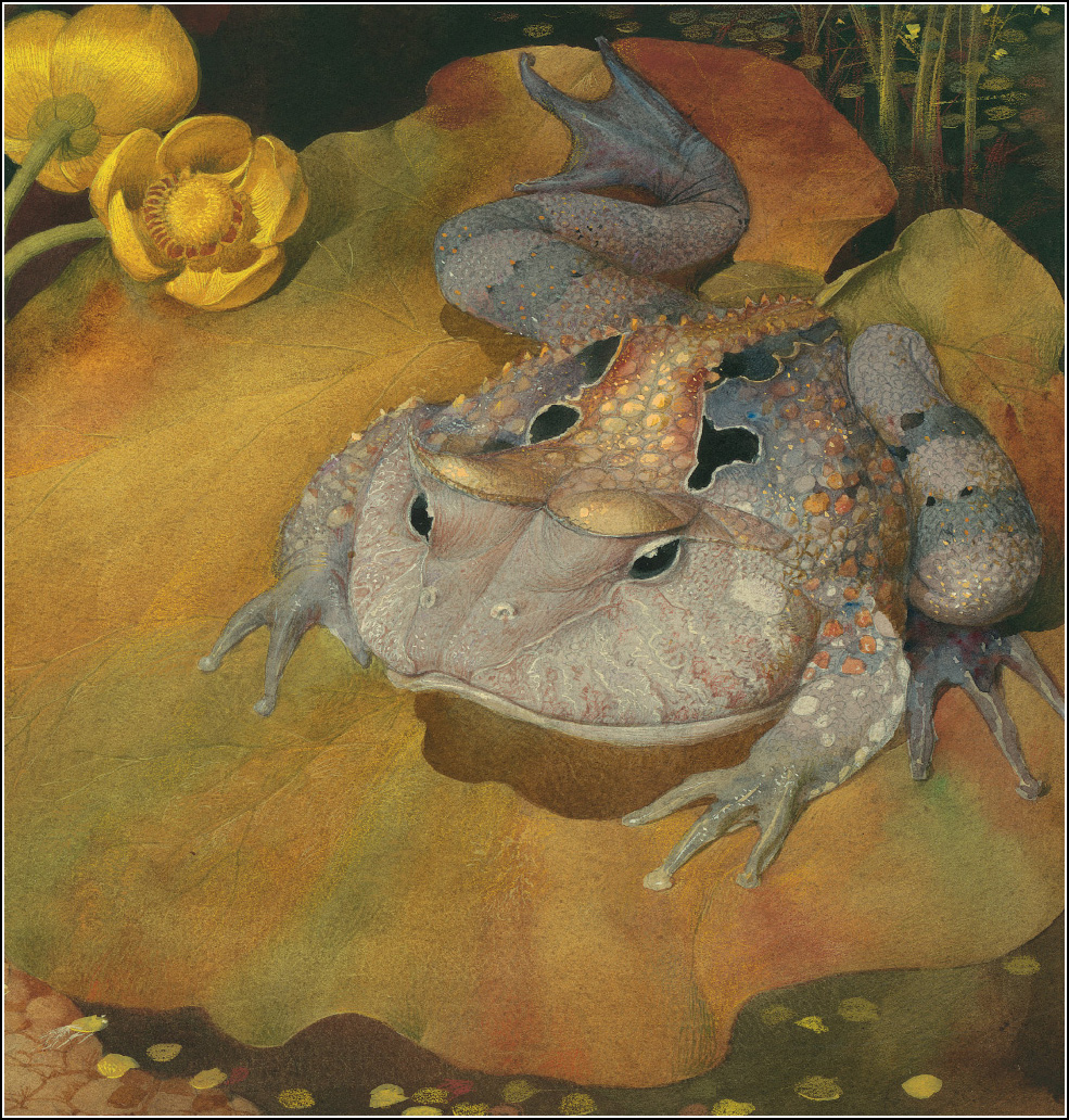 Gennady Spirin, frog song