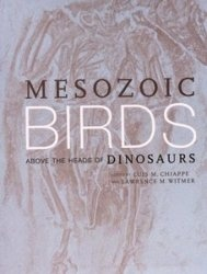 Mesozoic Birds: Above the Heads of Dinosaurs