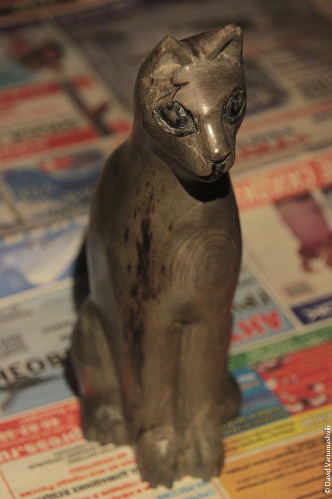 Конголезский кот