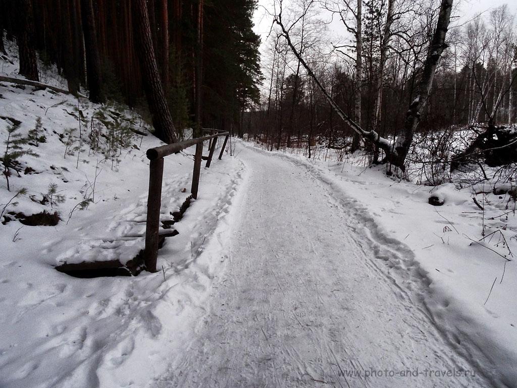 """Фото 9. Так выглядят дорожки в природном парке """"Бажовские места"""" зимой. При съемке мне следовало ввести коррекцию экспозиции на компактной камере Sony Cyber Shot где-то на +0,3...+0,7 EV, тогда снег получился бы белым, а не серым (настройки цифрового фотоаппарата: 400, 4,3 (24), 8, 1/125)"""