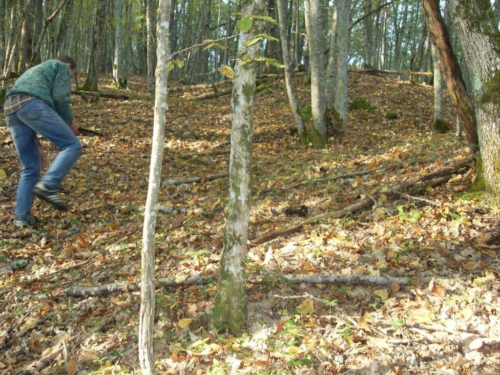 12 октября 2008, под Горячим Ключом, в лесу (108).JPG