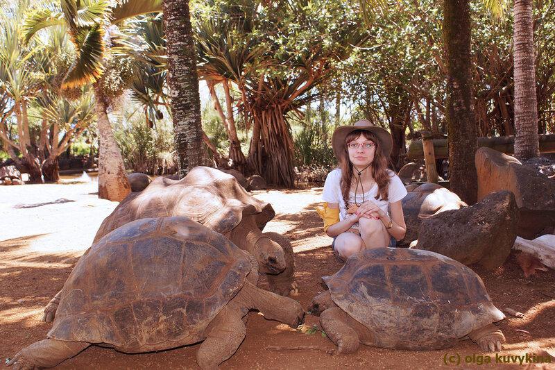 Гигантские черепахи парка Ла Ваниль, Маврикий