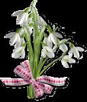 весенние цветы (29).png