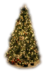 Kerst_32011.png