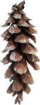 Christmas_Time_MoleminaScrap_el  (54).png