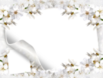 Simple-Flowers-Frames.png