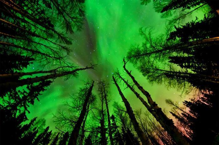 Красивые фотографии полярного сияния 0 10d625 9675de60 orig