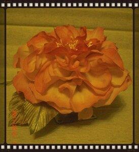 Роза - царица цветов 2 - Страница 29 0_fcb91_a97151c9_M