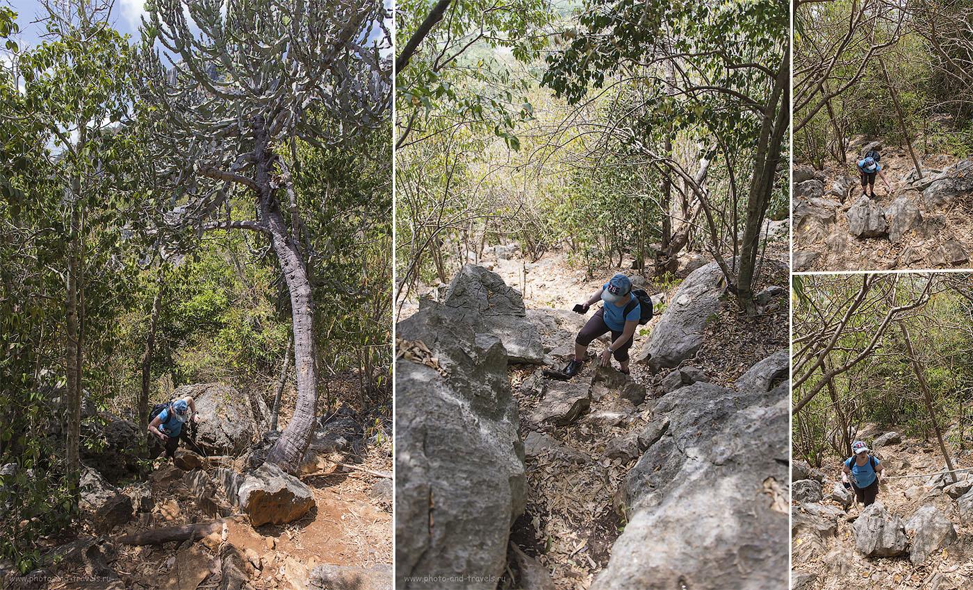 Фотография 4. Так выглядит тропа для подъема на гору Кхао Даенг (Khao Daeng Viewpoint) в национальном парке Сам Рой Йот в Таиланде. Тур по стране за рулем арендованной машины