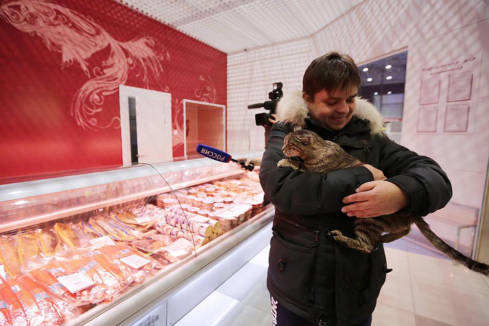 """Кот, объевший рыбный магазин в аэропорту Владивостока, стал талисманом ХК """"Адмирал"""""""