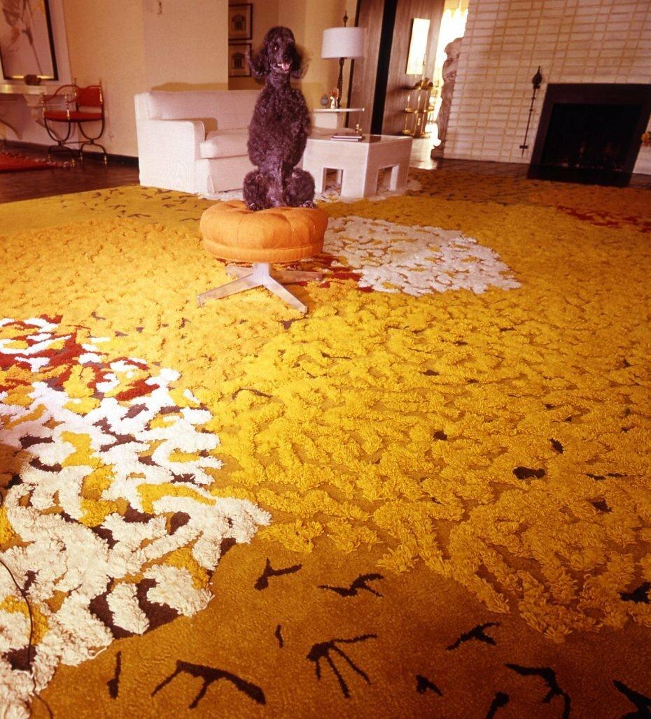 1960. Пудель на ковре, Палм-Спрингс