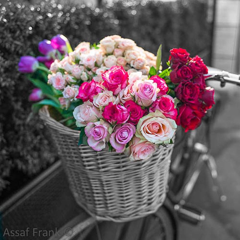 AF20120316 Paris 1407C01.jpg