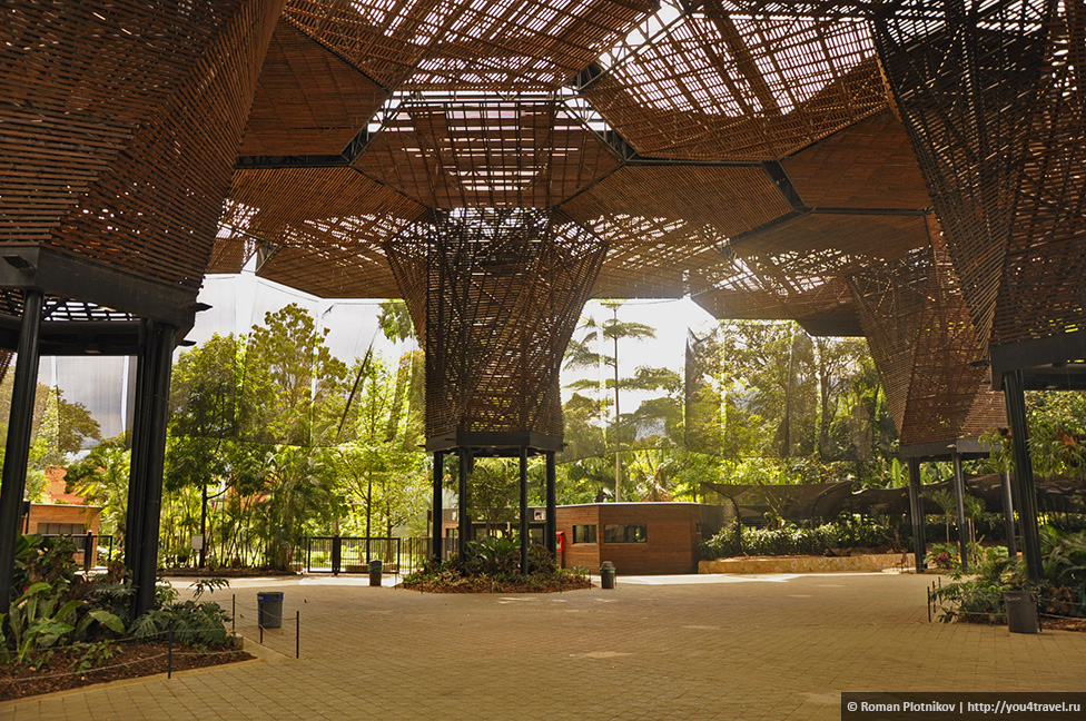 0 168b2b c15445db orig День 192 200. Хардин Ботанико, прощальная вечеринка на крыше в Медельине и перелет в Боготу
