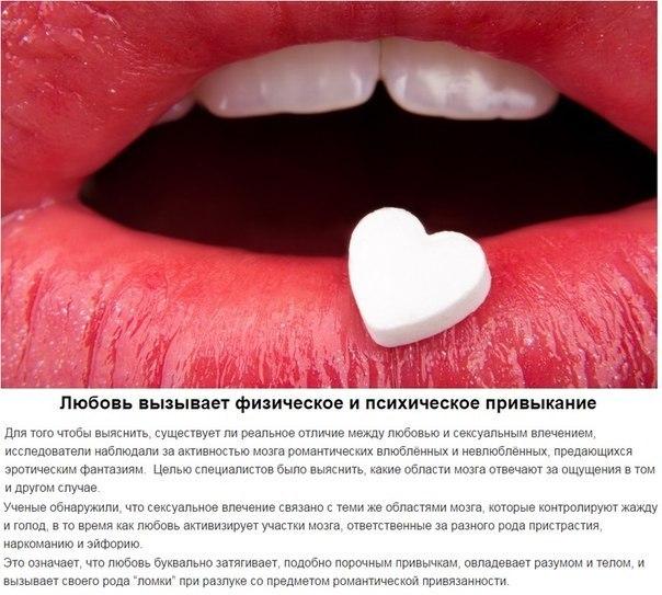 научные-факты-о-любви5.jpg