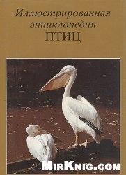 Книга Иллюстрированная энциклопедия птиц