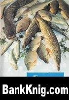 Книга Советы хозяйкам. Блюда из рыбы. Комплект открыток pdf